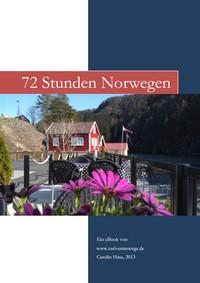 "Kostenloses E-Book ""72 Stunden Norwegen"""