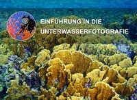 """Kostenloses E-Book """"Einführung in die Unterwasserfotografie"""""""